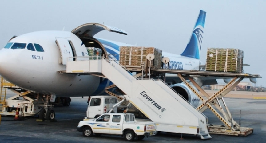ECS' Turkish subsidiary inks pact with EgyptAir Cargo | Aviation